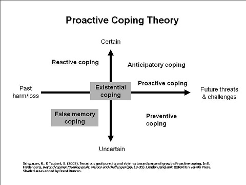 Schwarzer and Taubert identify four coping strategies that exist on planes between past harm and future threats, and certain or uncertain: reactive, anticipatory, preventive, and proactive.